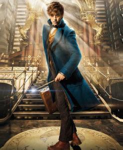 Fantastic Beasts Newt Scamander Eddie Redmayne Coat